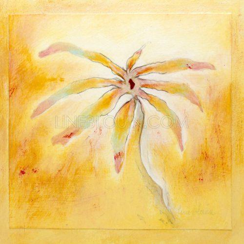 À fleur de peau no 35